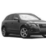 Audi Q5 (08-17)